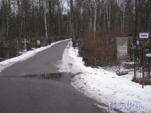 Богословское кладбище. Главная аллея. Фото февраль 2014 г.