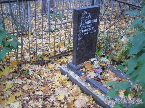 Г. Ломоносов, Мартышкинское кладбище. Захоронение Б.Б. Янковского. Фото 16 октября 2014 г.