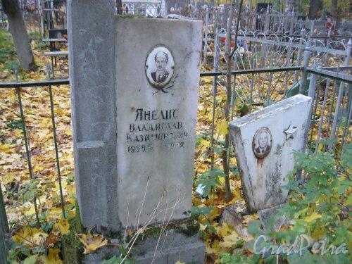 Г. Ломоносов, Мартышкинское кладбище. Захоронение В.К. Янелис. Фото 16 октября 2014 г.
