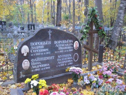 Г. Ломоносов, Мартышкинское кладбище. Захоронение Воробьёвых-Файншмит-Муринас. Фото 16 октября 2014 г.