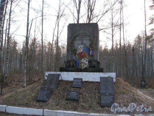 Лен. обл., Выборгский р-н, Братское захоронение у шоссе А-125 недалеко от пос. Каменка. Фото 16 апреля 2014 г.