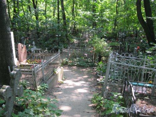 Красненькое кладбище. Фрагмент. Фото 6 августа 2015 г.