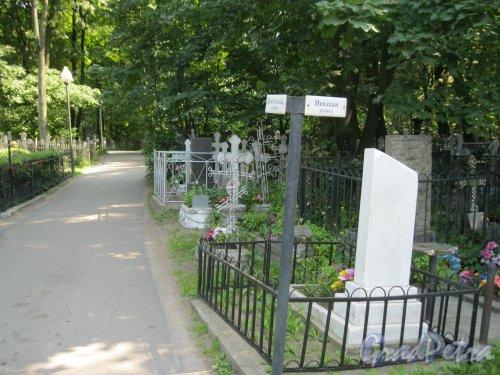 Красненькое кладбище. Перекрёсток Центральной дорожки и Невской дорожки. Фото 6 августа 2015 г.