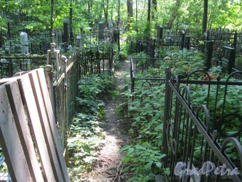 Красненькое кладбище. Зелёная дорожка. Фото 6 августа 2015 г.