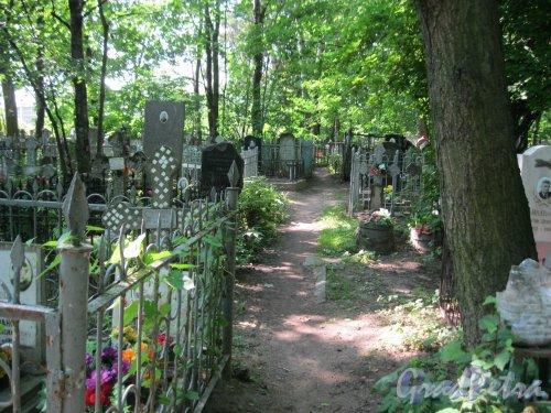 Красненькое кладбище. Дорожка. Фото 6 августа 2015 г.