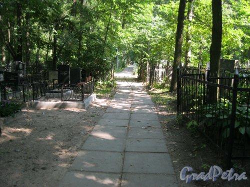 Красненькое кладбище. Проезжая дорожка. Фото 6 августа 2015 г.