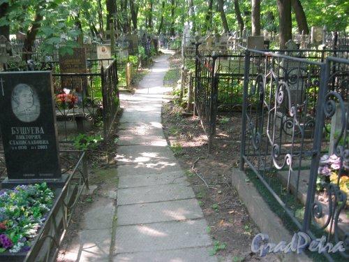 Красненькое кладбище. Красненькая дорожка. Фото 6 августа 2015 г.