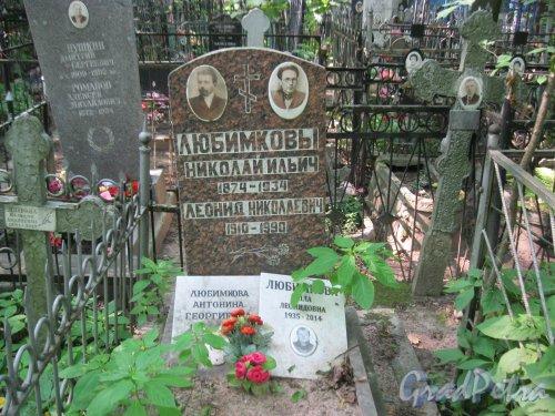 Красненькое кладбище. Захоронение семьи Любимковых. Фото 6 августа 2015 г.