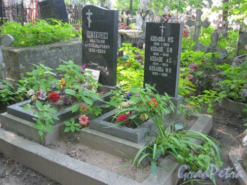 Красненькое кладбище. Захоронение семьи Козловых и А.А. Петерсона. Фото 6 августа 2015 г.