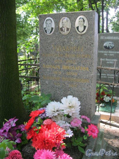 Красненькое кладбище. Захоронение семьи Ушаковых. Фото 6 августа 2015 г.
