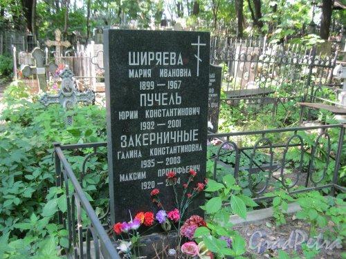 Красненькое кладбище. Захоронение М.И. Ширяевой, Ю.К. Пучкль, Г.К. и М.П. Закерничных. Фото 6 августа 2015 г.