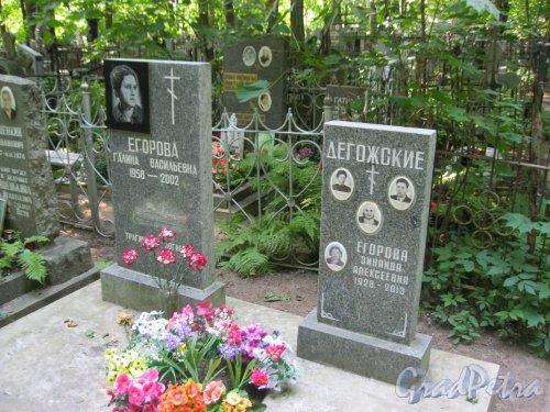 Красненькое кладбище. Захоронение семей Долгожских и Егоровых. Фото 6 августа 2015 г.