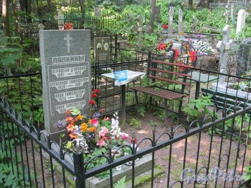 Красненькое кладбище. Захоронение семьи Лапкиных. Фото 6 августа 2015 г.