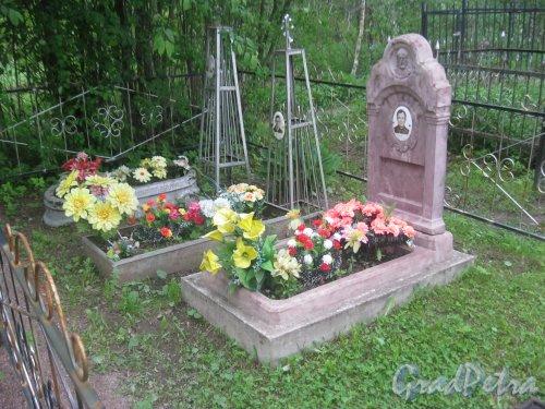Лен. обл., Гатчинский р-н, пос. Сусанино, Вокзальная сторона. Одно из захоронений на кладбище. Фото 3 июня 2015 г.