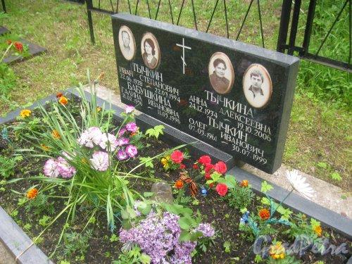 Лен. обл., Гатчинский р-н, пос. Сусанино, Вокзальная сторона. Захоронение семьи Тычкиных-Бабушкиных. Фото 3 июня 2015 г.