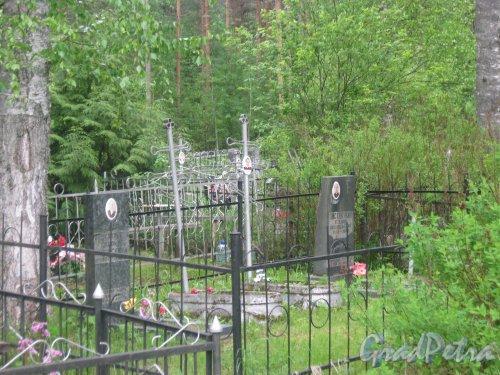 Лен. обл., Гатчинский р-н, пос. Сусанино, Вокзальная сторона. Захоронение семьи Листраткиных. Фото 3 июня 2015 г.