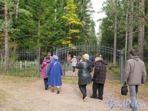Комаровское кладбище. Ограда и вход. фото октябрь 2016 г.