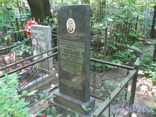 Красненькое кладбище. Захоронение семьи Соколовых. Фото 6 августа 2015 г.
