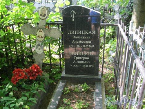 Красненькое кладбище. Захоронение А.А. и К. Курмаш, Н.К. Спиридоновой, В.А. и Г.А. Липицких. Фото 6 августа 2015 г.