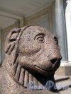 Нижний парк (Петергоф). Воронихинские колоннады. Фрагмент скульптуры льва. Фото август 2011 г.