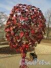 «Дерево любви» и сундучок для ключей молодоженов в Опочининском саду. Фото 11 апреля 2014 года.