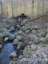 Шуваловский парк. Дамба между прудом «Рубаха Наполеона» и рекой Старожиловкой. Фото апрель 2014 г.