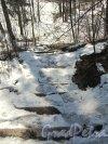 Шуваловский парк. Каменная лестница. Фото апрель 2012 г.