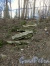 Шуваловский парк. Каменная лестница. Фото апрель 2014 г.