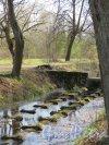 Луговой парк. Нитки водоводов в Ольгинском канале. фото май 2016 г.