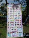 Центральный культуры и отдыха парк (ЦПКиО). Аллея у входа. Фестиваль тюльпанов. Плакат с информацией о посаженных тюльпанах. фото май 2016 г.