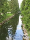 Екатерининский парк (Пушкин). Перспектива Рыбного канала на границе Регулярного парка. фото май 2016 г.