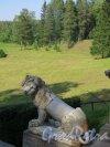 Павловский парк. Большая каменная лестница. Мраморная статуя льва. фото июнь 2016 г.