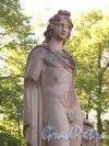 Павловский парк. Статуя Аполлона у садового фасада Дворца. фото июнь 2016