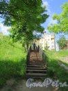 Овражный парк (Кронштадт). Гранитная лестница у смотровой площадке и Якорной площади. фото июнь 2017 г.