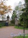 Гатчинский парк (Дворцовый). Большие железные (Зверинские) ворота, 1790-е гг, арх. В. Бренна. Вид на ворота со стороны парка. фото октябрь 2017 г.