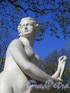 Летний сад. Главная аллея, вторая площадка. Статуя «Аллегория Архитектуры». Торс фигуры. фото май 2018 г.
