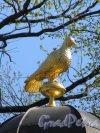 Летний сад. Боскет «Птичий двор». Павильон «Голубятня». Завершение. фото май 2018 г.