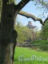 Екатерининский парк (Пушкин). Башня-руина с искусственной горкой. Общий вид района у павильона. фото май 2018 г.