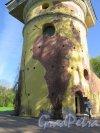 Екатерининский парк (Пушкин). Башня-руина с искусственной горкой. Общий вид Башни. фото май 2018 г.