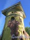 Екатерининский парк (Пушкин). Башня-руина с искусственной горкой. Верхняя часть башни. фото май 2018 г.