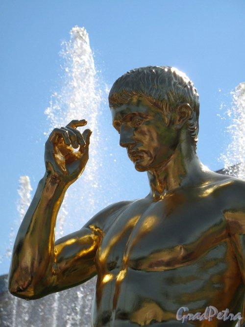 Нижний парк (Петергоф). Большой Каскад. Статуя. Фото август 2011 г.
