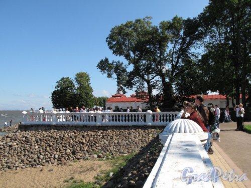 Нижний парк (Петергоф). Дворец Монплезир. Оформление прибрежной полосы. Фото август 2011 г.