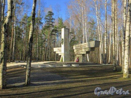 Парк Сосновка. Мемориальный комплекс в память о военном аэродроме «Сосновка». Фото 26 марта 2014 года.