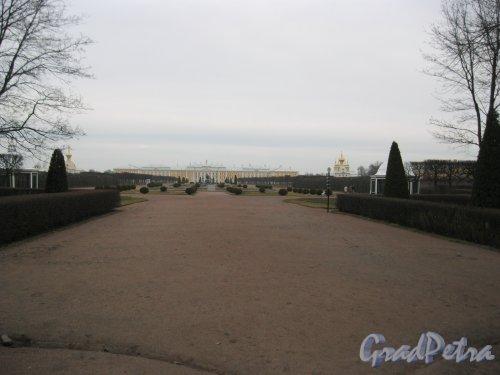 г. Петергоф, Верхний сад (парк). Общий вид от входа с Санкт-Петербургского пр. Фото 27 марта 2014 г.
