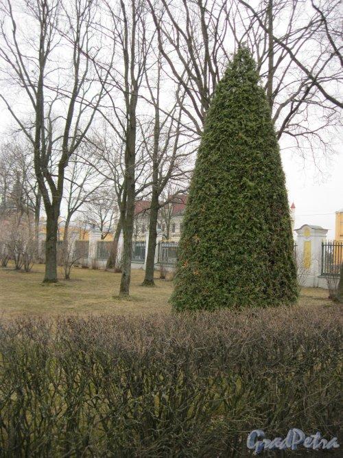 г. Петергоф, Верхний сад (парк). Фрагмент. Фото 27 марта 2014 г.
