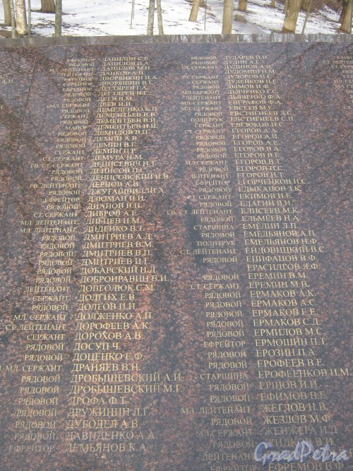 г. Красное Село, парк Красное Село. Братская могила Советских воинов в парке. Имена погибших воинов (ефрейтор Данилин С.Р. - ефрейтор Ефремов). Фото 24 февраля 2014 г.