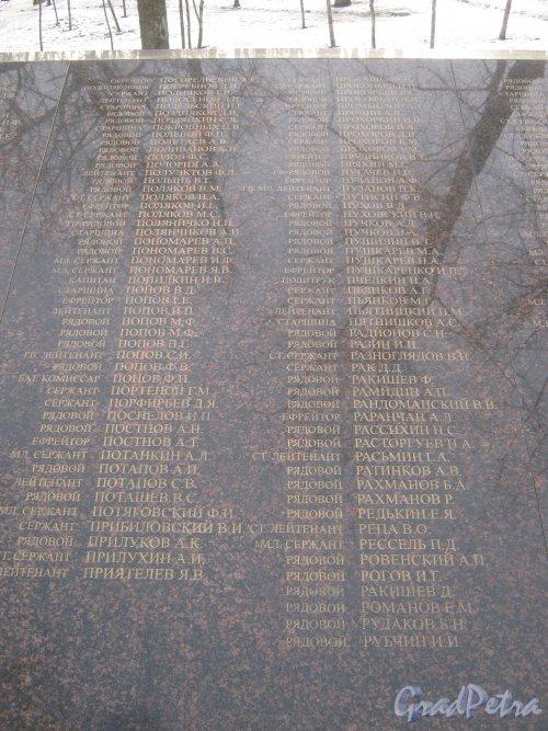 г. Красное Село, парк Красное Село. Братская могила Советских воинов в парке. Имена погибших воинов (ефрейтор Погорельский А.С. - рядовой Рубчин И.И.). Фото 24 февраля 2014 г.