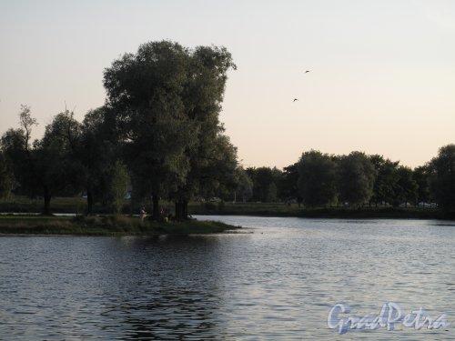 Муринский гидропарк. Разлив Муринского ручья во время заката. фото июль 2014 г.