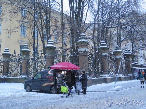 Михайловский сад. Решетка сада зимой в вечернем освещении. фото январь 2015 г.