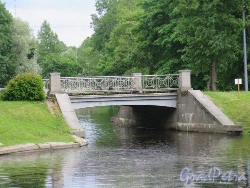 Центральный культуры и отдыха парк (ЦПКиО). Мостик на 3-м Северном пруду Елагина острова. фото июнь 2015 г.